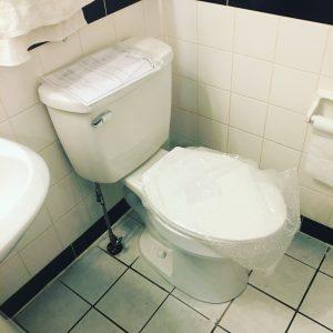 toilet installation ottawa plumber